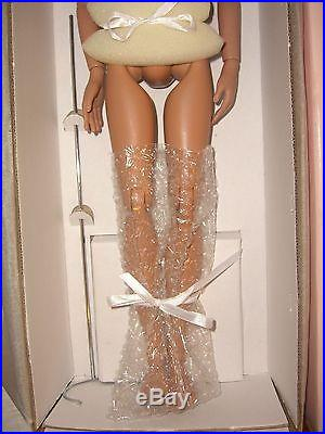 PRINCE CHARMING GROOM NUDE Tonner DOLL 2007 LE 500 Cinderella 17 IN WRONG BOX